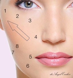 8 point facelift - Non-surgical lift, The Liquid facelift